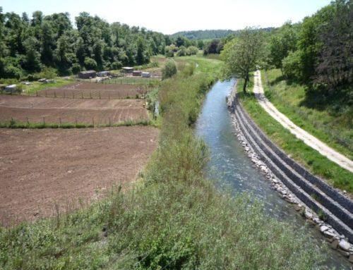 Qualità delle acque del fiume Marta: le analisi sugli sversamenti e le attività svolte finora