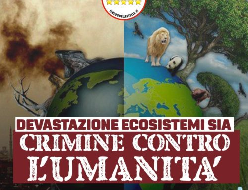DEVASTAZIONE ECOSISTEMI SIA CRIMINE CONTRO L'UMANITA