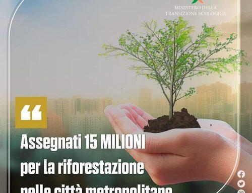 15 milioni di euro alle città metropolitane per i migliori progetti per la riforestazione urbana